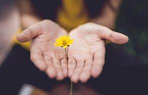 Największym skarbem człowieka jest to, co dał innym