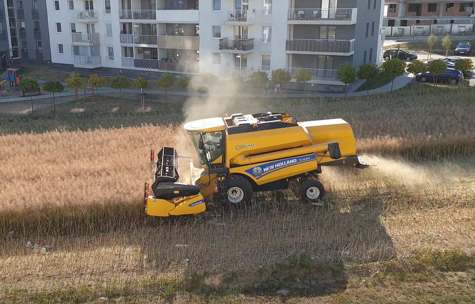 """Uprawia pole między blokami w Lublinie. """"Spokojnie pracujemy i wychodzimy na swoje"""""""