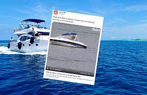 Mors atakuje luksusowe łodzie. Myśli, że jest to kra lodowa