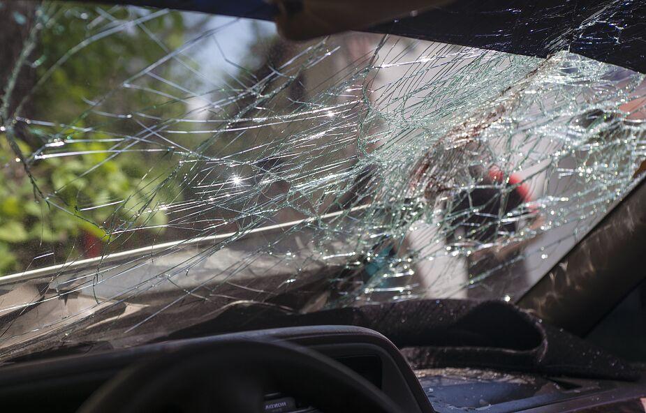Wypadek autokaru wiozącego dzieci. Kierowca był pod wpływem alkoholu