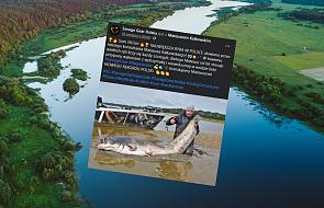 Złowił ogromną rybę w Wiśle! Pobił rekord Polski