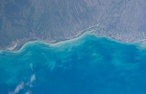 Pożary w Australii wywołały wzrost glonów w oceanie