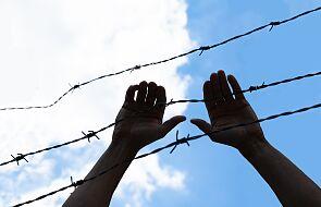 Nielegalne przekroczenia granicy polsko-białoruskiej. Ponad 230 prób