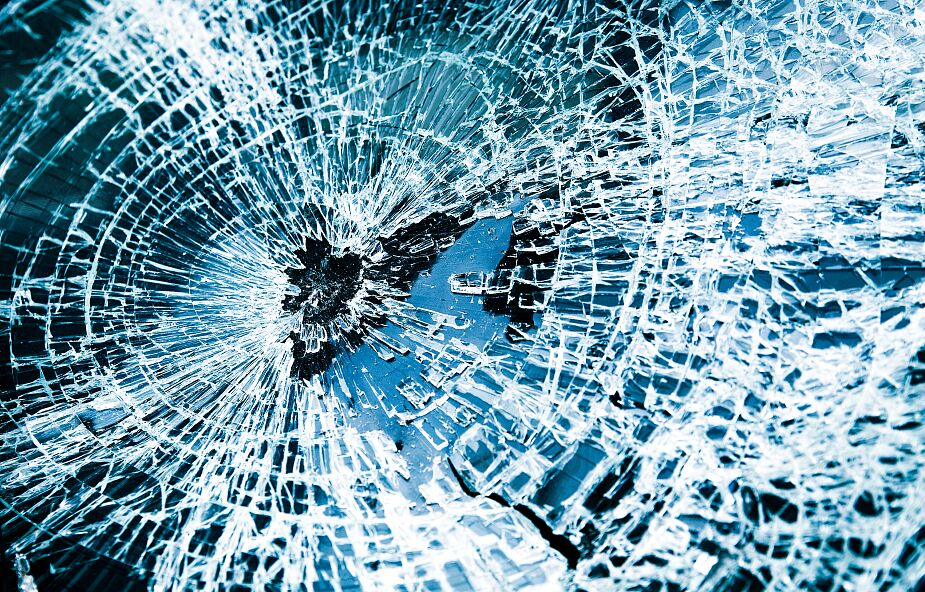 Samochód zderzył się z łosiem. Młody kierowca zginął na miejscu